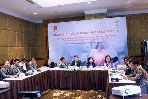 Hội Y học từ 6 nước Đông Nam Á cùng chia sẻ kinh nghiệm phòng chống dịch COVID-19