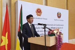 Kỷ niệm 45 năm quan hệ Việt Nam - Mozambique