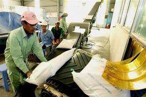 Giá gạo Việt Nam tăng lên mức cao nhất trong 9 năm qua