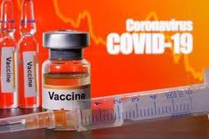 WHO đạt thỏa thuận 2 tỷ liều vaccine COVID-19 cung cấp cho toàn thế giới