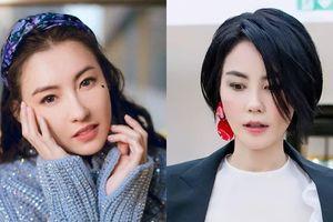 Trương Bá Chi hủy show vì né tránh Vương Phi