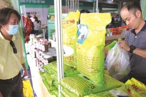 Tìm ngôi vương cho gạo Việt