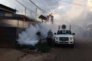 An Giang ghi nhận 2 ca dương tính với bệnh Chikungunya