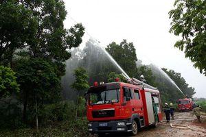 Hà Nội triển khai các biện pháp phòng, chống cháy rừng dịp lễ, Tết