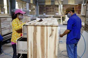 Xuất khẩu gỗ của Việt Nam có thể vượt 12 tỷ USD