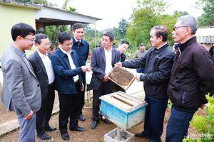 Bí thư Tỉnh ủy Thái Thanh Quý thăm, làm việc tại thị xã Thái Hòa