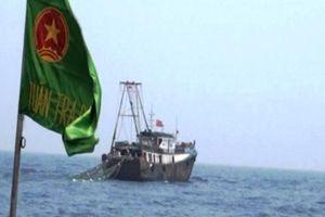 Đuổi hai tàu cá treo cờ Trung Quốc cố tình xâm phạm sâu vào vùng biển Việt Nam