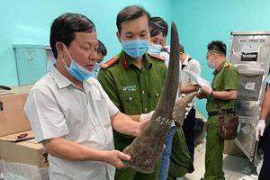 Thành phố Hồ Chí Minh: Bắt lô hàng 93kg nghi là sừng tê giác