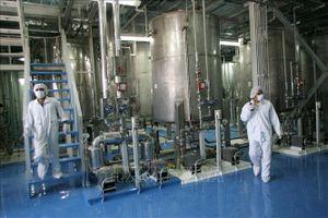 Đề cao vai trò ngoại giao đa phương trong giải quyết vấn đề hạt nhân Iran