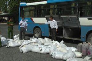An Giang: Bắt xe khách vận chuyển gần 1,7 tấn huyết heo không rõ nguồn gốc