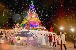 Hà Nội: Bạn đã kịp check-in cùng 'cây măng Noel' đẹp như ở trời Âu chưa?