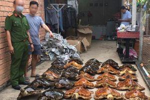 Bắt quả tang vụ buôn bán rùa biển quy mô lớn