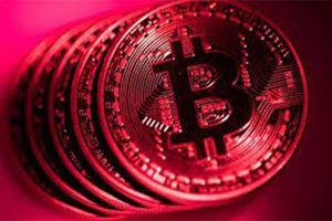 Giá Bitcoin hôm nay 24/12: Bitcoin rực cháy giữa biển lửa thị trường