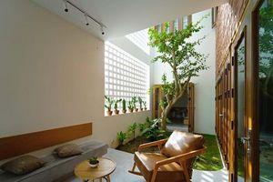 Độc đáo ngôi nhà để trống 30% diện tích để hứng sáng, đón gió