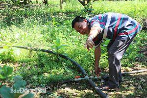 Bảo vệ nguồn nước cho sản xuất nông nghiệp