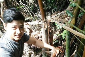 Sinh viên khởi nghiệp từ cây dừa nước