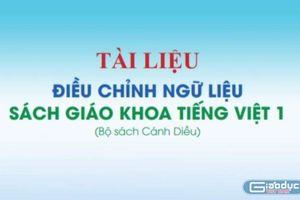 Hàng triệu cuốn Tiếng Việt lớp 1 mới sẽ vào sọt rác, 'chả' ai chịu trách nhiệm