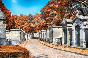 Bất ngờ với vẻ đẹp tráng lệ của những nghĩa trang khắp thế giới