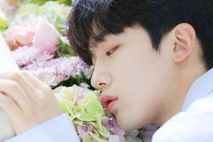Bình chọn top 8 hoàng tử K-Pop, vị trí dẫn đầu đương nhiên về tay trai đẹp nhà Big Hit