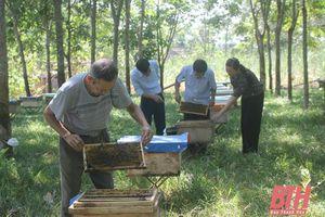 Đảng bộ huyện Cẩm Thủy tăng cường kiểm tra, giám sát, ngăn ngừa sai phạm