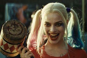 Harley Quinn được lên kế hoạch cho bộ phim solo thứ hai dựa trên hoạt hình người lớn ?