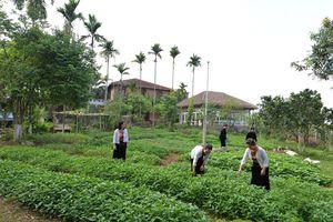 Hà Tĩnh: Đảm bảo công tác an sinh xã hội - ổn định đời sống người dân