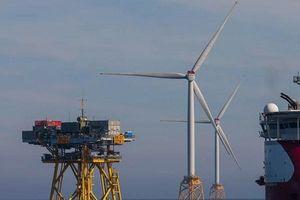 SSE và Equinor đầu tư điện gió ngoài khơi lớn nhất thế giới