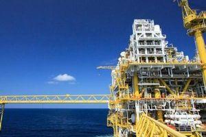Ả Rập Saudi phát hiện 4 mỏ dầu khí quan trọng trong vùng lãnh hải