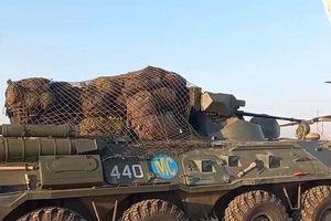 Ngoan cố giành đất Syria quân thánh chiến chết hàng loạt vì 'đòn' Nga