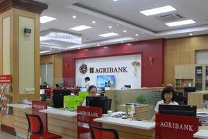 Agribank bán hàng trăm m2 đất của hãng dược ANPHACO để thu hồi nợ