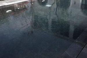 2 trẻ sinh đôi chết đuối tại bể nước trong khuôn viên gia đình