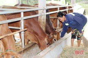 Chính sách tiếp sức phát triển nông nghiệp Cẩm Xuyên