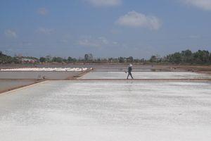 Công bố Di sản văn hóa phi vật thể quốc gia 'Nghề làm muối ở Bạc Liêu'