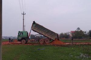 Quảng Bình: Công ty Lực Bình sử dụng đất 'lậu' thi công dự án tiền tỷ?