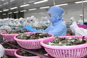 Xuất khẩu Hàn Quốc: Nhiều rủi ro nếu không tuân thủ vệ sinh an toàn thực phẩm