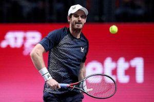 Andy Murray nhận vé đặc cách dự Australia Mở rộng