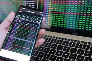 Một cổ phiếu tăng 'phi mã' gần 250%, sếp lớn tung bán chốt lời