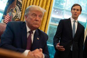 Ông Trump quát mắng con rể vì mâu thuẫn trong ứng phó Covid-19