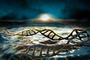 Quan điểm mới về nguồn gốc sự sống