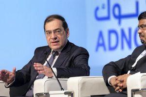 Ai Cập ký 9 thỏa thuận thăm dò dầu khí, trị giá hơn 1 tỷ USD