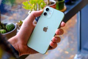 iPhone 12 và loạt iPhone giảm giá tiền triệu đầu năm 2021