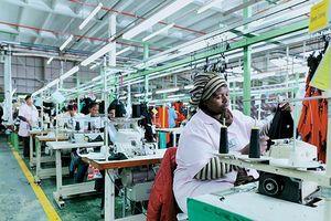 Dấu hiệu phục hồi kinh tế Nam Phi