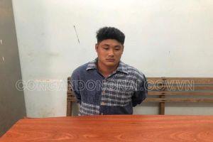 Gã trai ở Đồng Nai sát hại người phụ nữ bằng 15 nhát dao