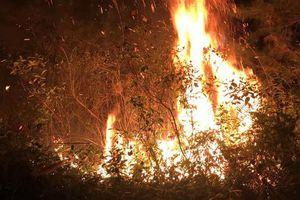 Hà Nội: Huy động khoảng 1.100 người dập tắt đám cháy rừng trồng Sóc Sơn