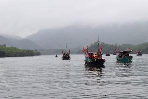 Trải nghiệm bơi thuyền trên sông Ba Chẽ