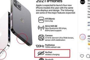 Rò rỉ hình ảnh iPhone 13, cư dân mạng xôn xao với 'hint' bỏ cổng sạc