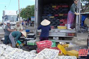 Thị xã Nghi Sơn: Năm 2020 tổng sản lượng khai thác và nuôi trồng thủy sản đạt 37.569 tấn