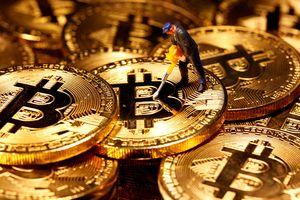 JPMorgan: 'Giá Bitcoin có thể tăng lên đến 146.000 USD/đồng'