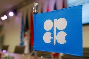 OPEC+ chưa chốt được chính sách sản lượng do Nga và Ả Rập Saudi bất đồng