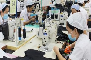 Thực hiện Bộ luật Lao động mới: Việt Nam 'tăng tốc' gia nhập nhóm quốc gia có thu nhập cao